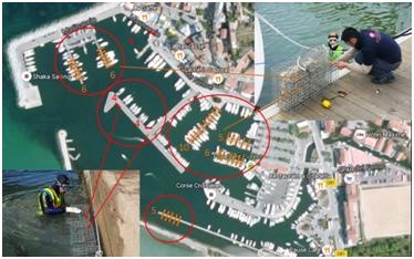 Biohut port de Saint-Florent